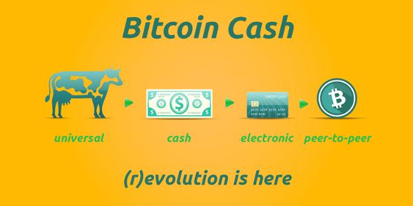 Bitcoin Cash Seemingly Bottoms