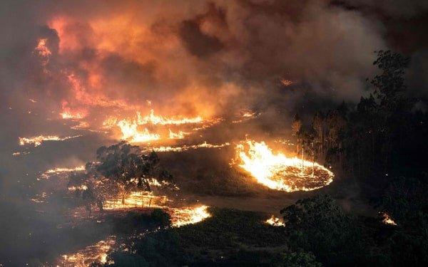 Australia fires, 2019-2020
