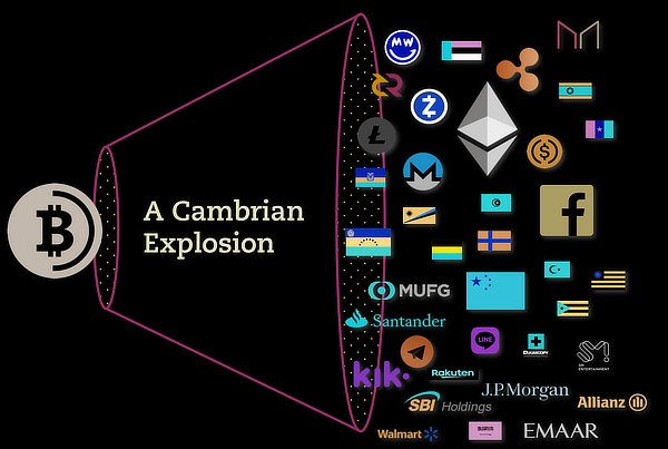 Bitcoin Cambrian explosion, Ark Invest, July 2020