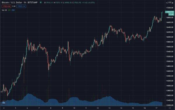 Bitcoin rises, Nov 2020