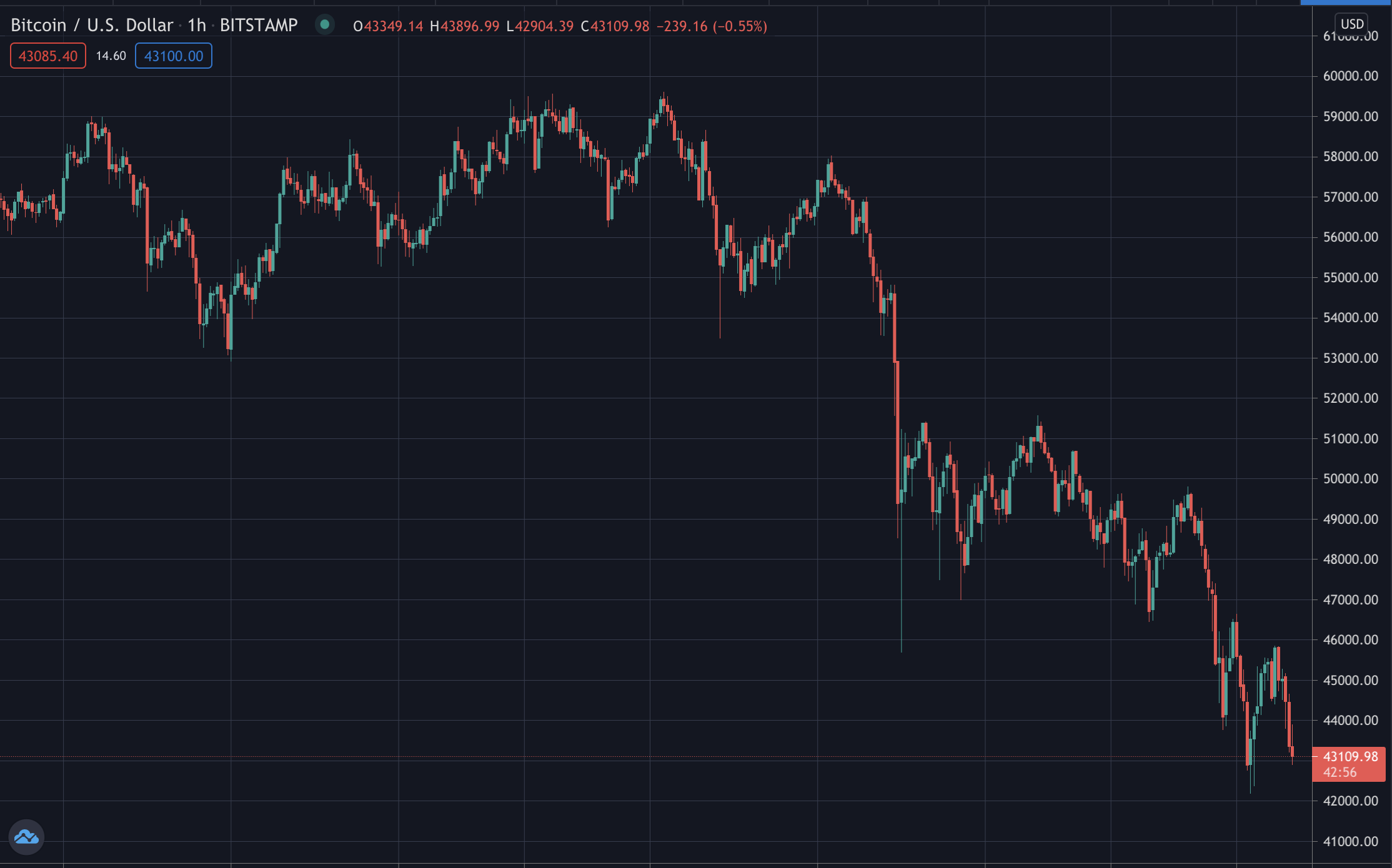 Bitcoin Maxis and Elon Musk Crash Price